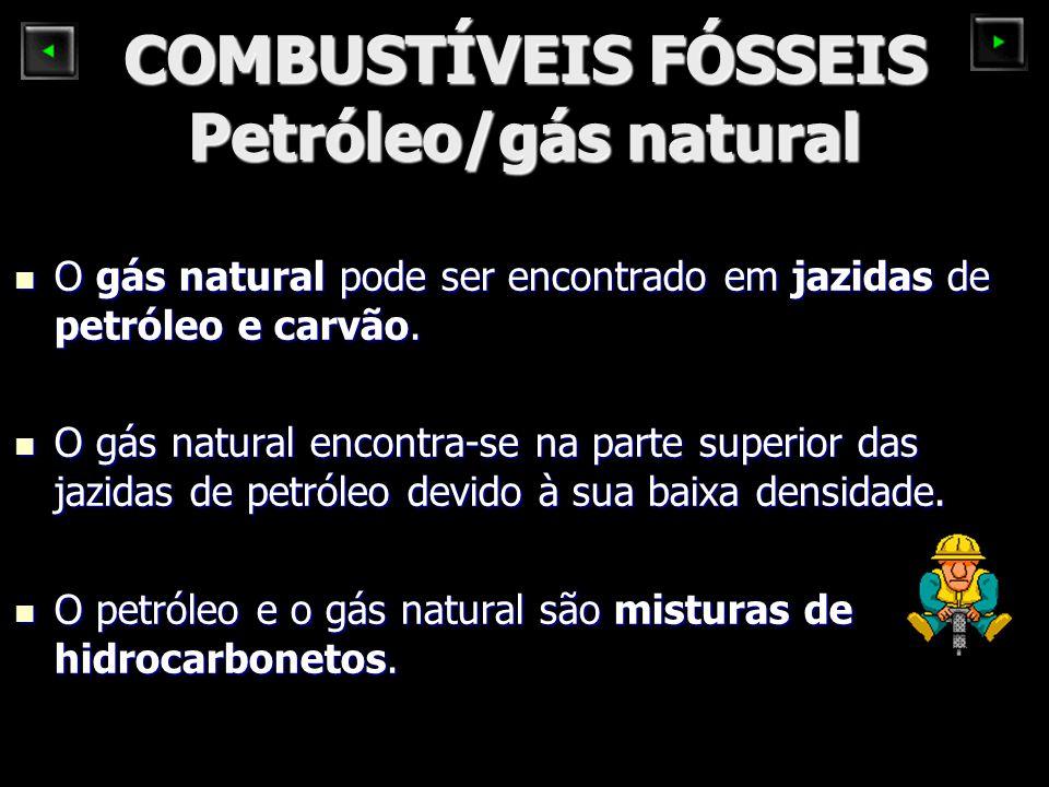COMBUSTÍVEIS FÓSSEIS Petróleo/gás natural