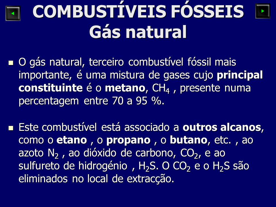 COMBUSTÍVEIS FÓSSEIS Gás natural