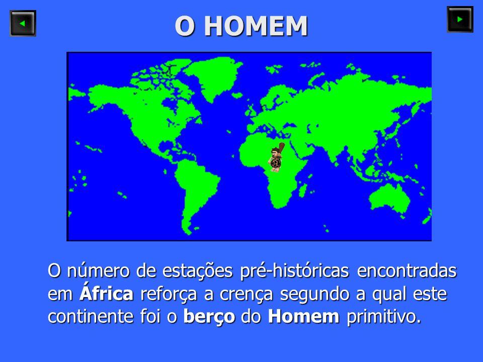 O HOMEM O número de estações pré-históricas encontradas em África reforça a crença segundo a qual este continente foi o berço do Homem primitivo.