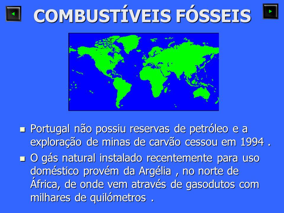 COMBUSTÍVEIS FÓSSEIS Portugal não possiu reservas de petróleo e a exploração de minas de carvão cessou em 1994 .