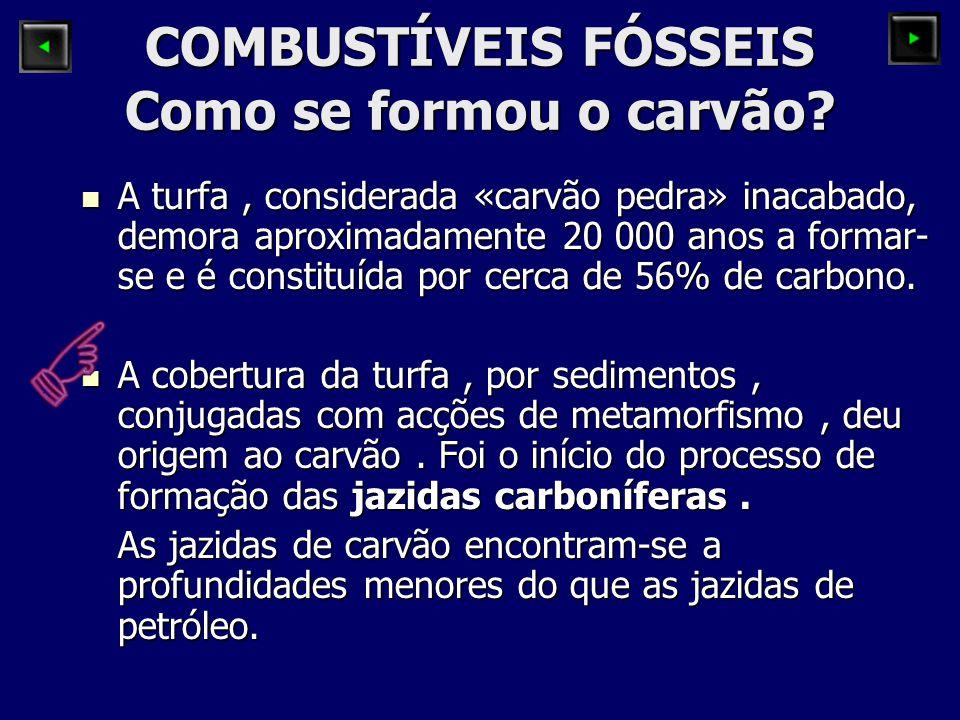 COMBUSTÍVEIS FÓSSEIS Como se formou o carvão