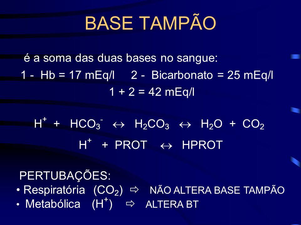 BASE TAMPÃO é a soma das duas bases no sangue:
