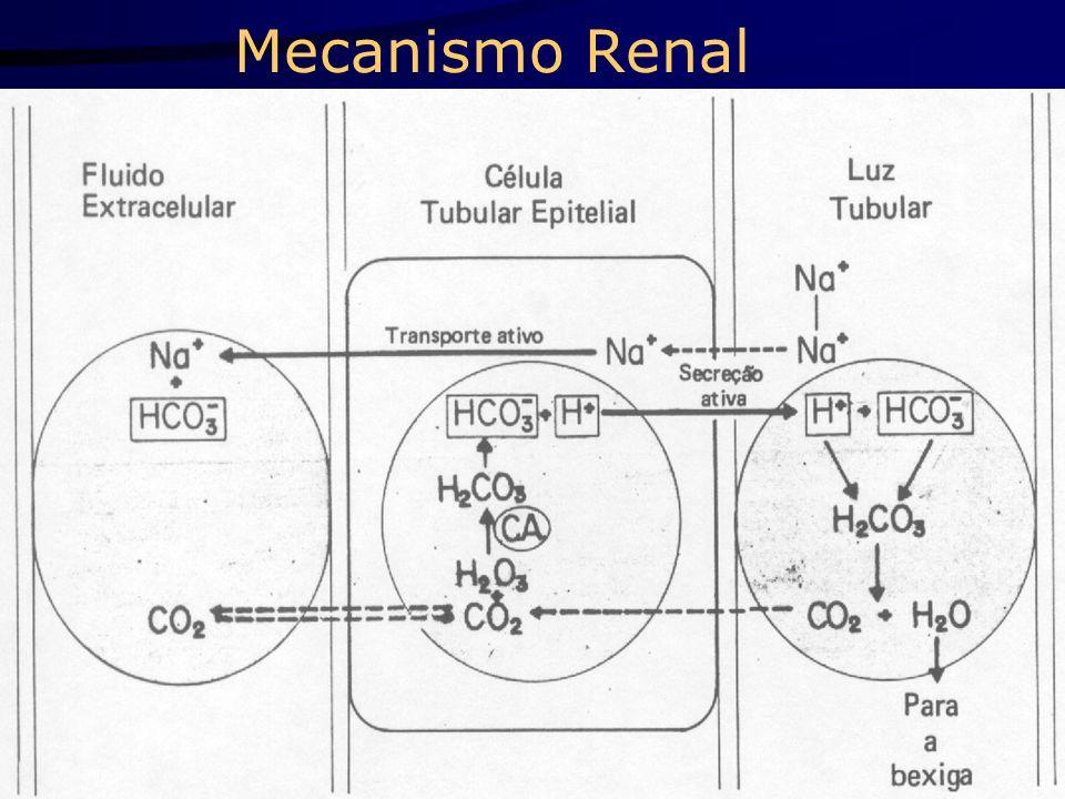 Mecanismo Renal