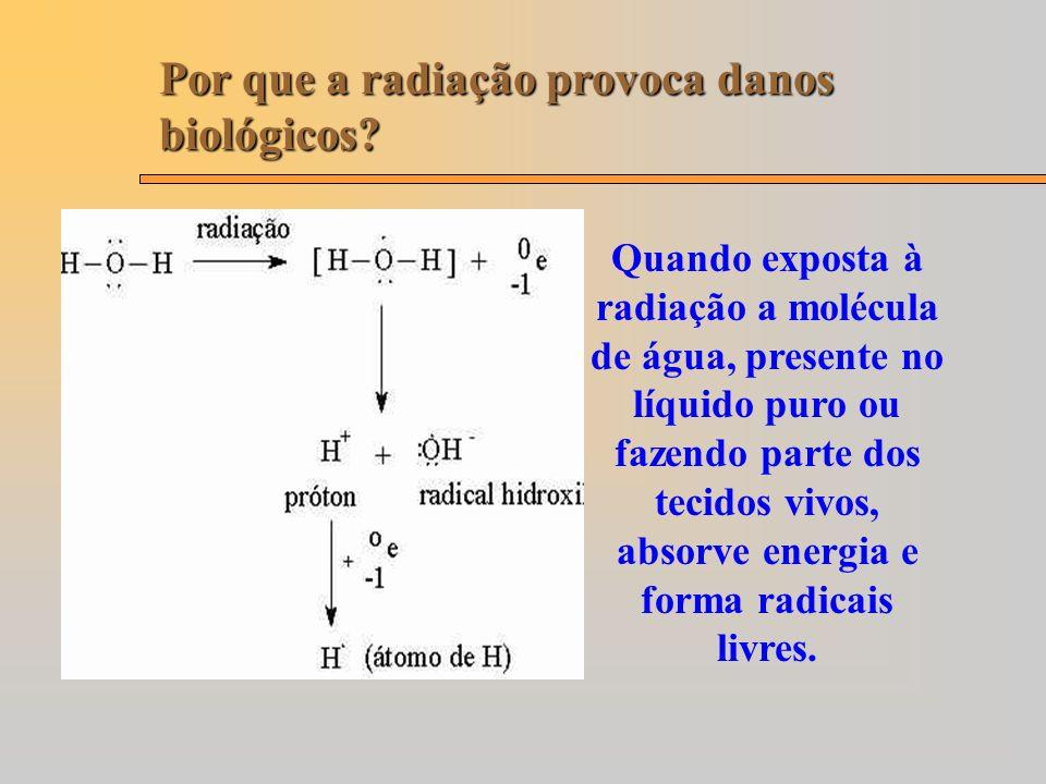 Por que a radiação provoca danos biológicos