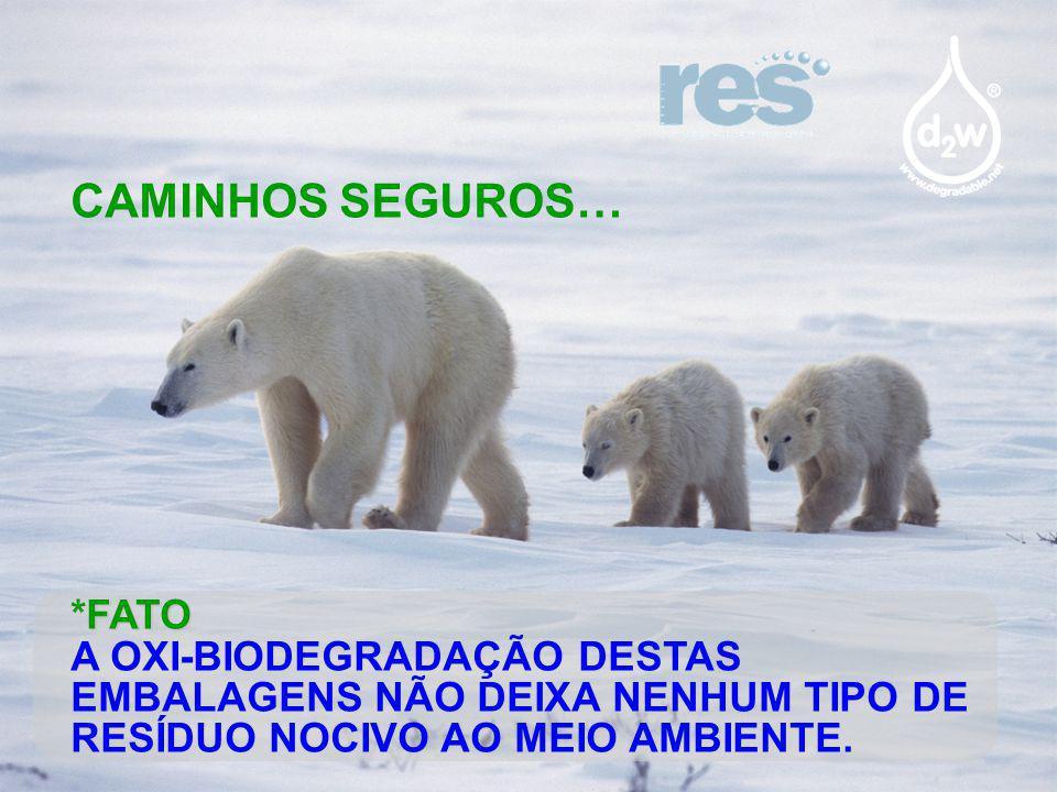 CAMINHOS SEGUROS… *FATO