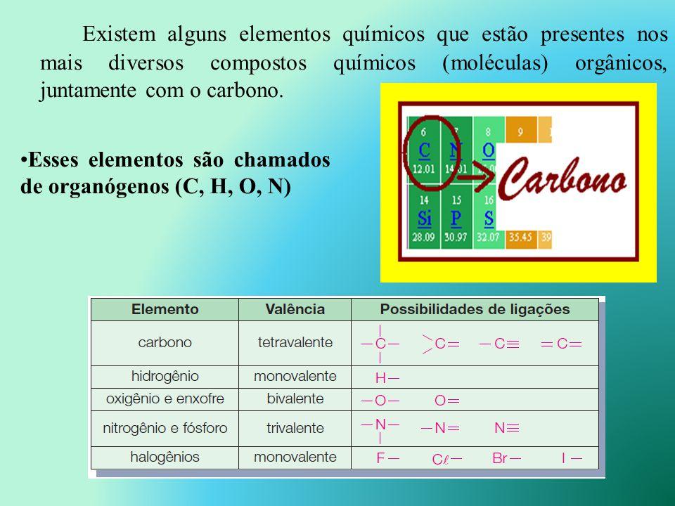 Existem alguns elementos químicos que estão presentes nos mais diversos compostos químicos (moléculas) orgânicos, juntamente com o carbono.