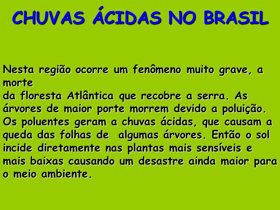 CHUVAS ÁCIDAS NO BRASIL