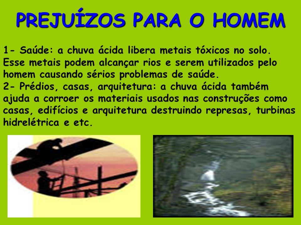 PREJUÍZOS PARA O HOMEM 1- Saúde: a chuva ácida libera metais tóxicos no solo.