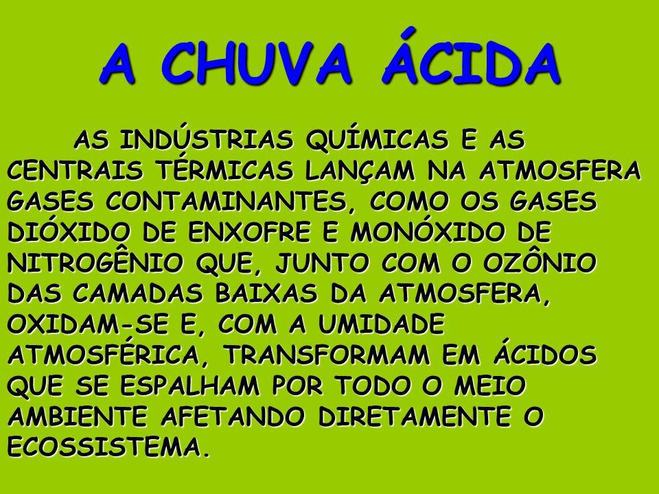 A CHUVA ÁCIDA