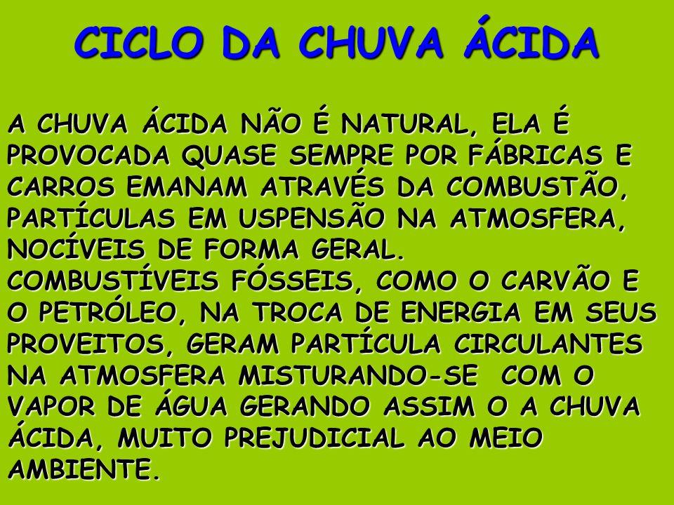CICLO DA CHUVA ÁCIDA