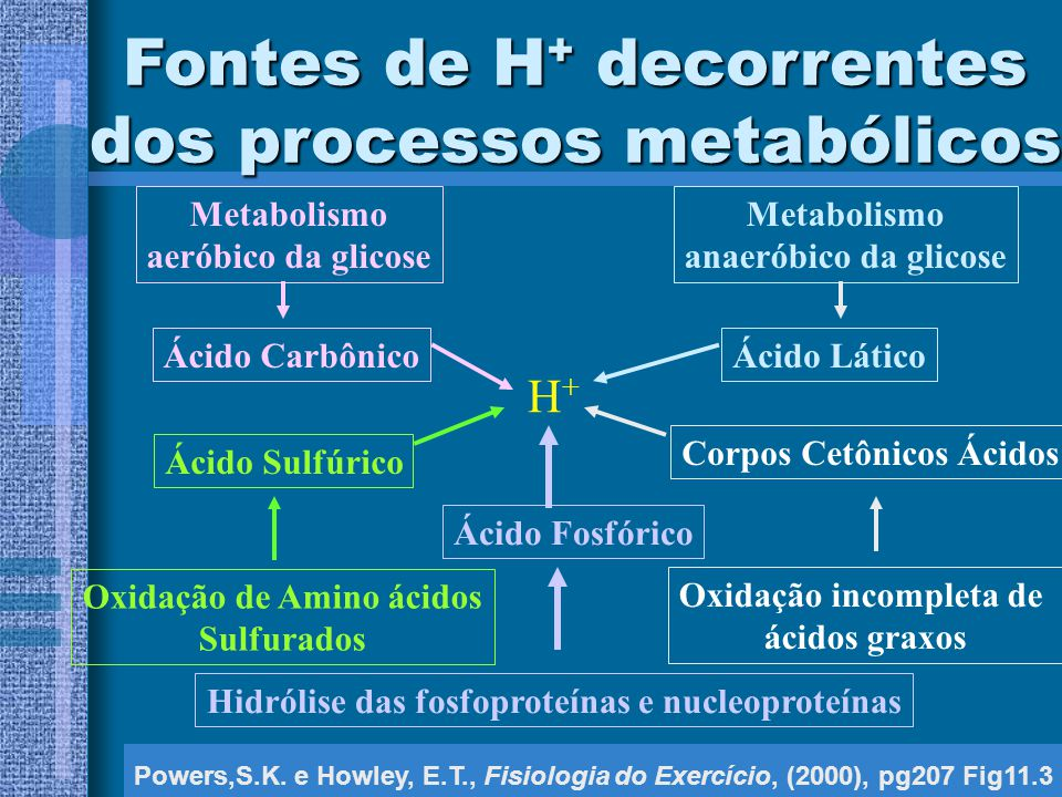 Fontes de H+ decorrentes dos processos metabólicos