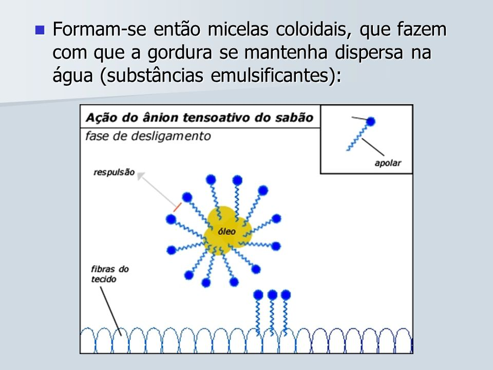 Formam-se então micelas coloidais, que fazem com que a gordura se mantenha dispersa na água (substâncias emulsificantes):
