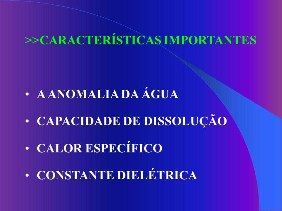 >>CARACTERÍSTICAS IMPORTANTES