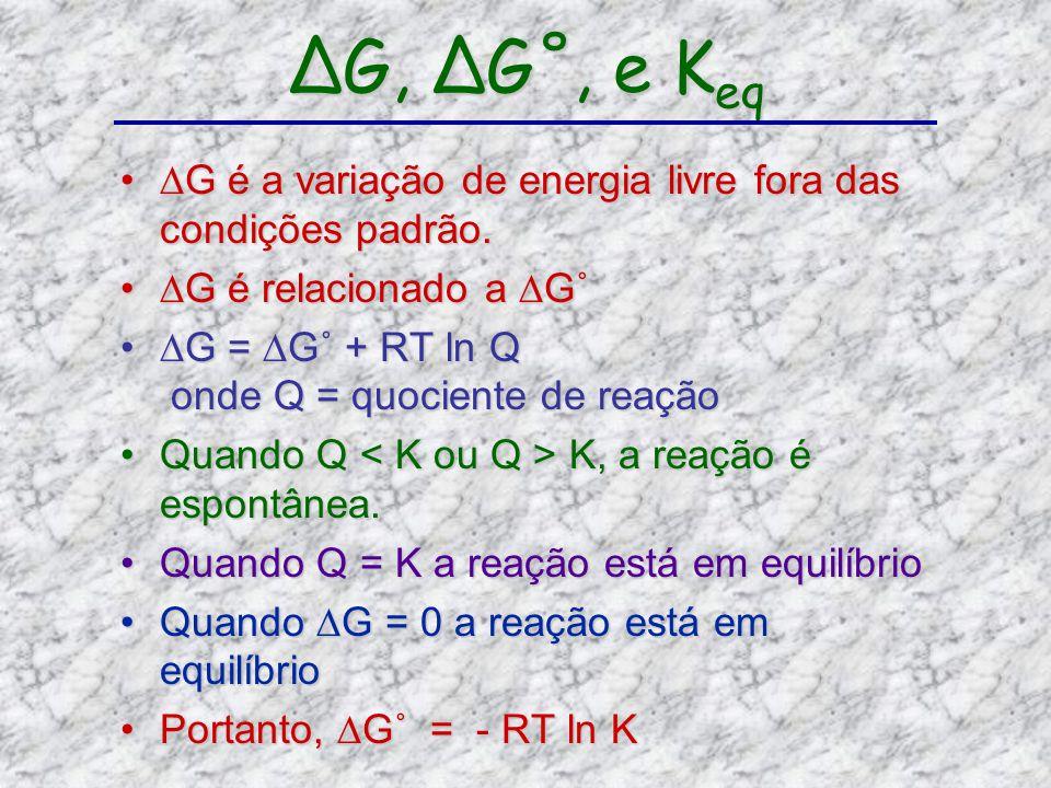 ∆G, ∆G˚, e Keq ∆G é a variação de energia livre fora das condições padrão. ∆G é relacionado a ∆G˚ ∆G = ∆G˚ + RT ln Q onde Q = quociente de reação.