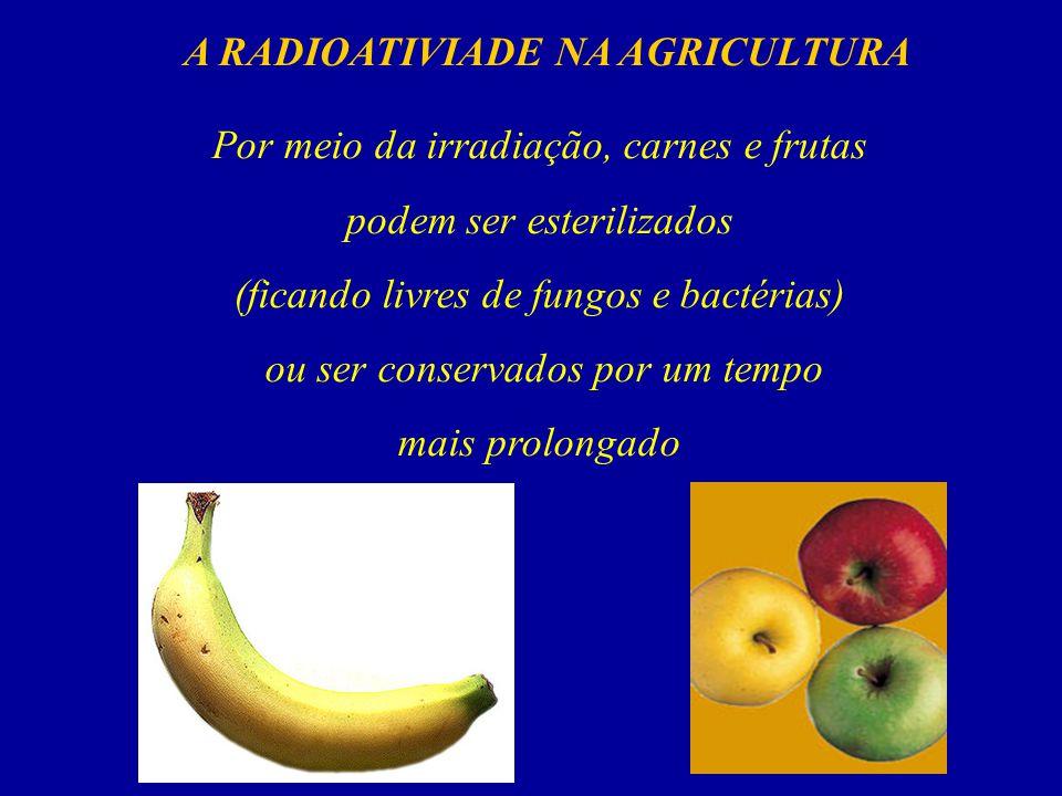 A RADIOATIVIADE NA AGRICULTURA