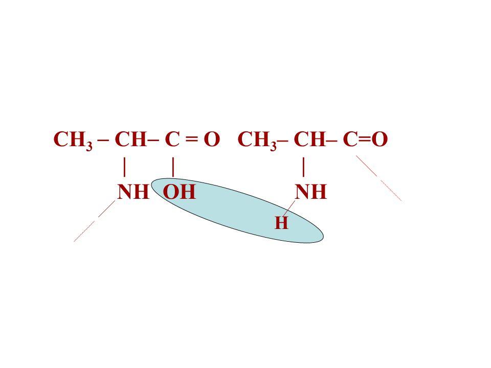 CH3  CH C = O CH3– CH– C=O | | | NH OH NH H
