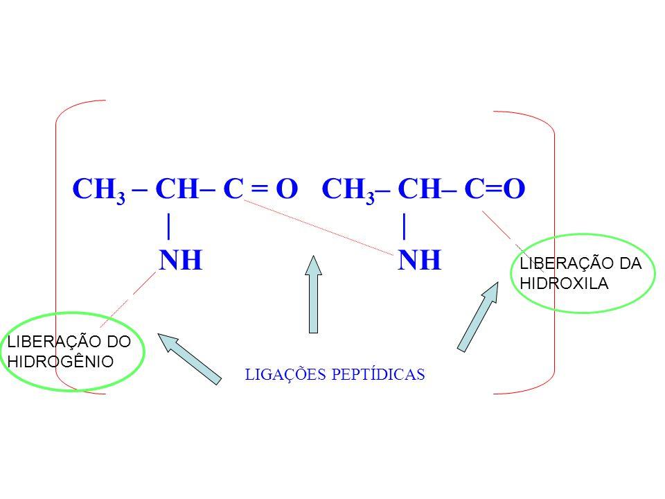 CH3  CH C = O CH3– CH– C=O | | NH NH LIBERAÇÃO DA HIDROXILA