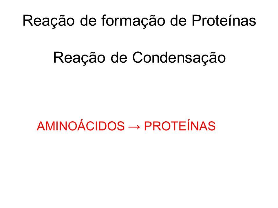 Reação de formação de Proteínas Reação de Condensação