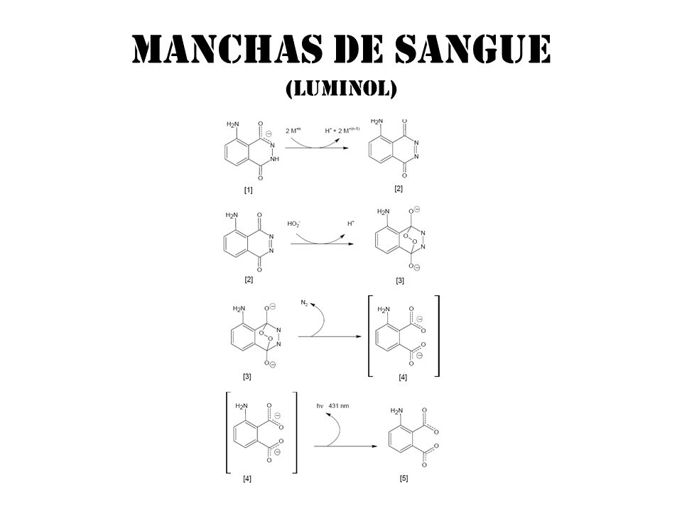 Manchas de sangue (luminol)