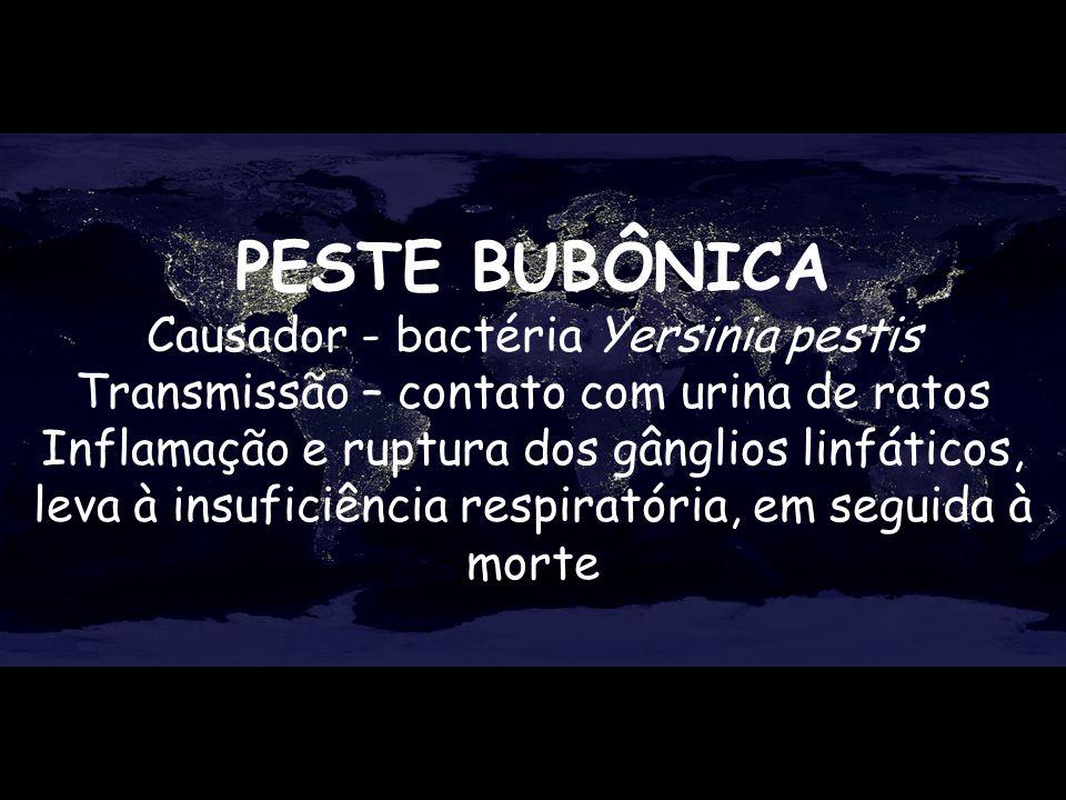 PESTE BUBÔNICA Causador - bactéria Yersinia pestis