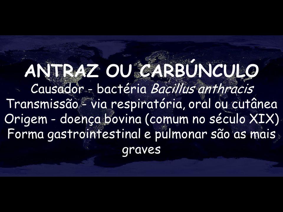 ANTRAZ OU CARBÚNCULO Causador - bactéria Bacillus anthracis Transmissão - via respiratória, oral ou cutânea.