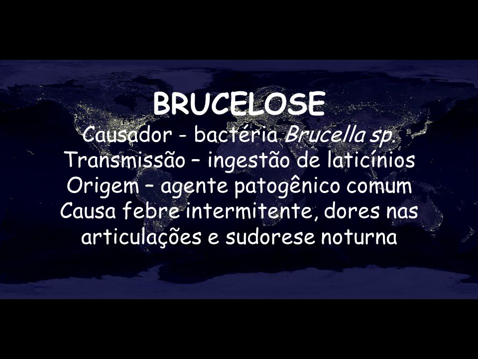 BRUCELOSE Causador - bactéria Brucella sp.