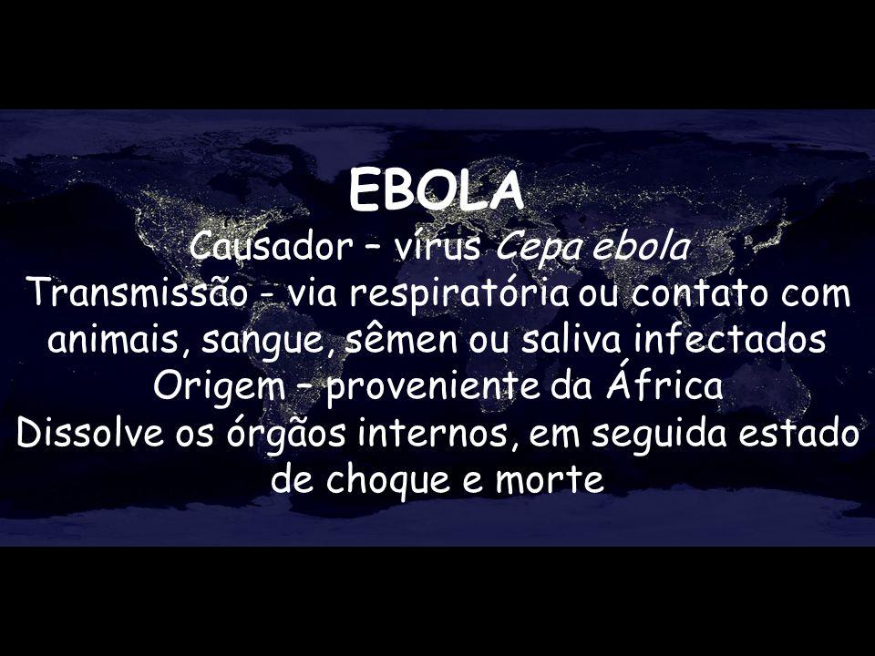 EBOLA Causador – vírus Cepa ebola