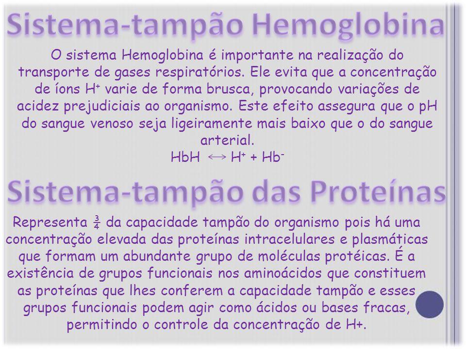 Sistema-tampão Hemoglobina Sistema-tampão das Proteínas