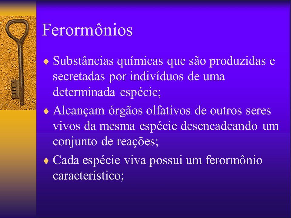 Ferormônios Substâncias químicas que são produzidas e secretadas por indivíduos de uma determinada espécie;