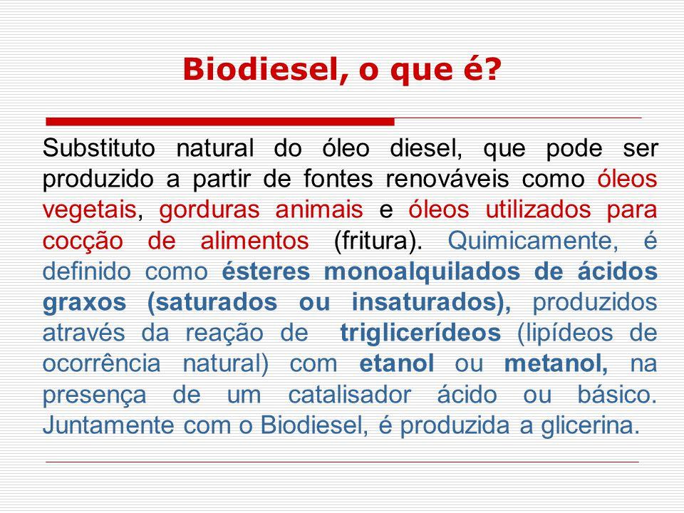 Biodiesel, o que é