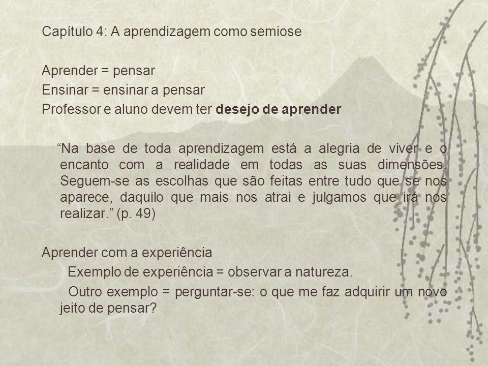 Capítulo 4: A aprendizagem como semiose