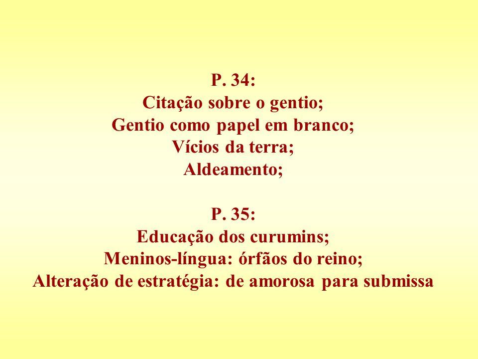 P. 34: Citação sobre o gentio; Gentio como papel em branco; Vícios da terra; Aldeamento; P.
