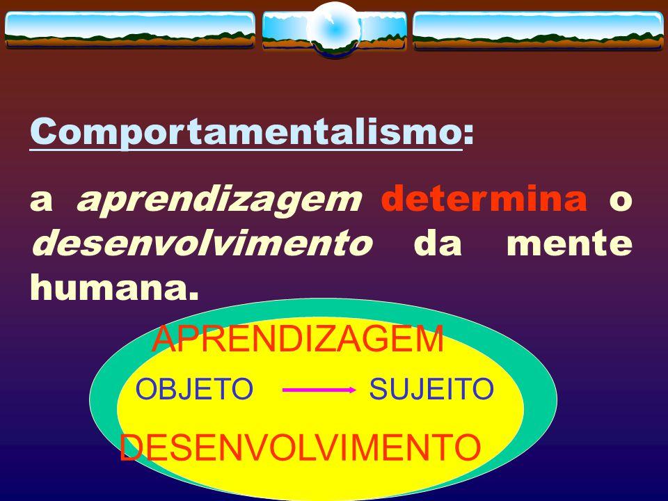 a aprendizagem determina o desenvolvimento da mente humana.