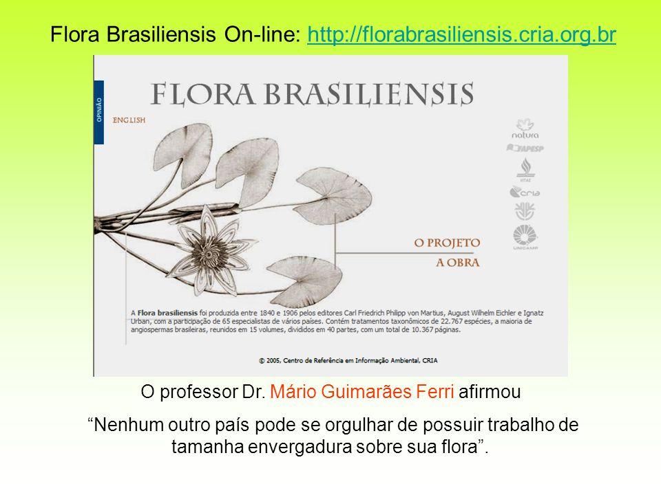 O professor Dr. Mário Guimarães Ferri afirmou
