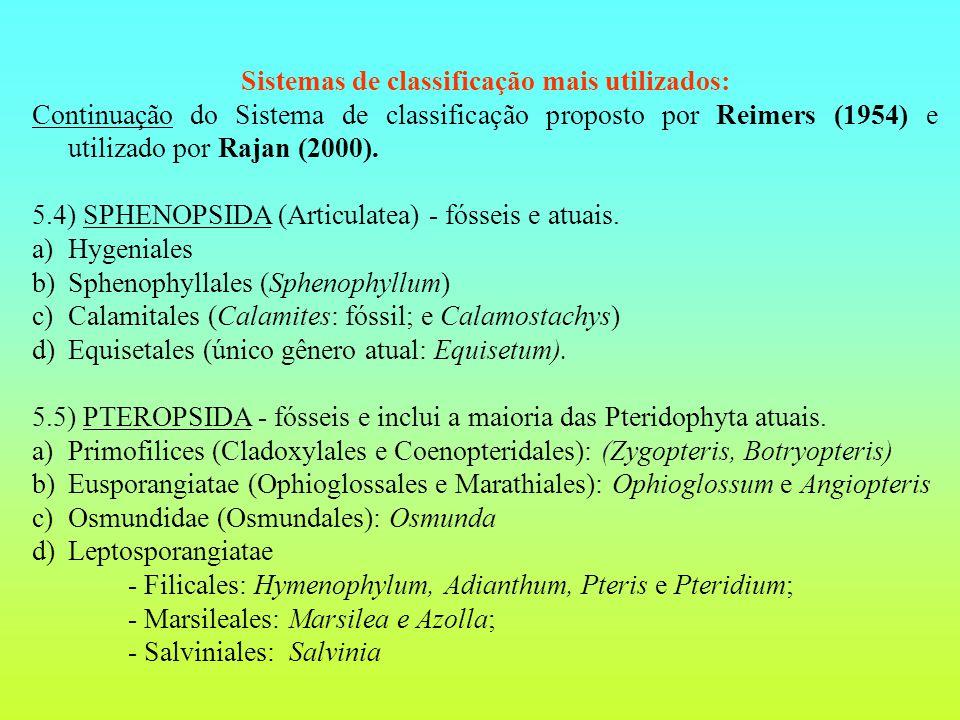Sistemas de classificação mais utilizados: