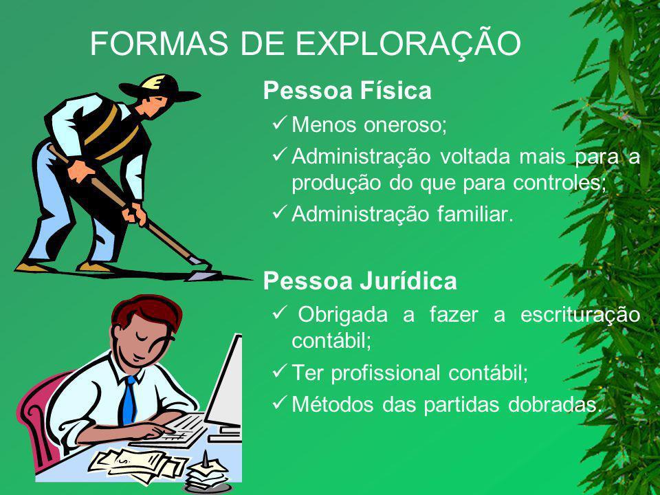 FORMAS DE EXPLORAÇÃO Pessoa Física Menos oneroso;