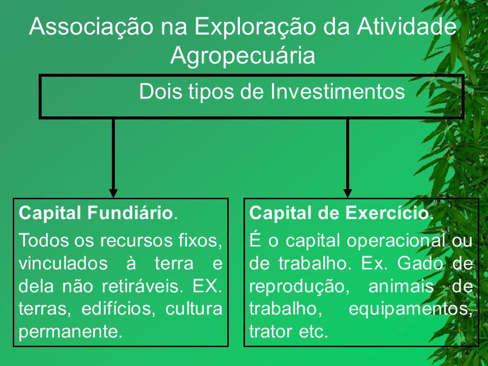 Associação na Exploração da Atividade Agropecuária