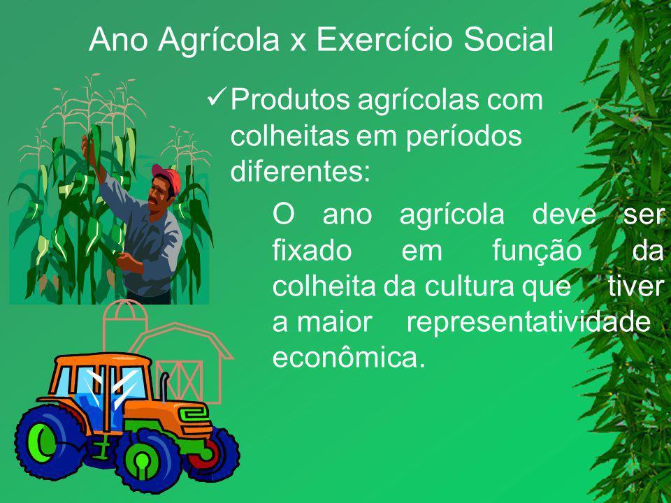 Ano Agrícola x Exercício Social