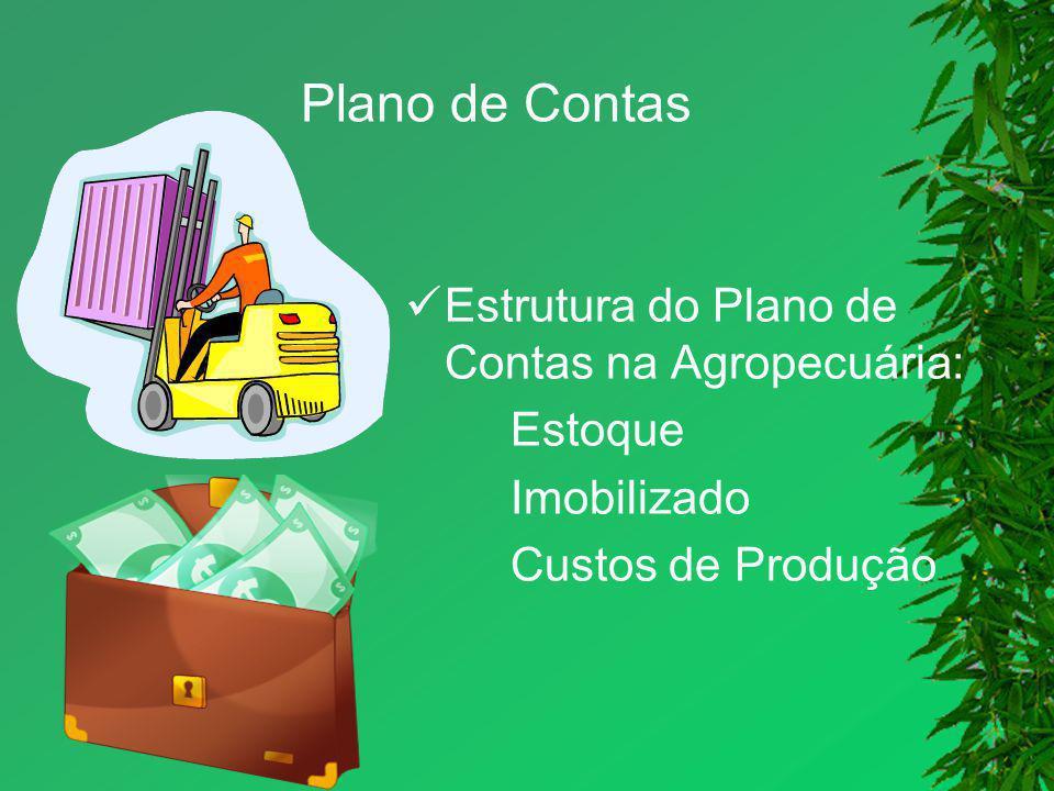 Plano de Contas Estrutura do Plano de Contas na Agropecuária: Estoque