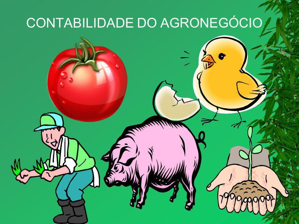 CONTABILIDADE DO AGRONEGÓCIO