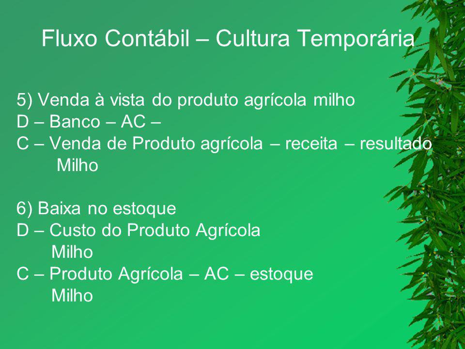 Fluxo Contábil – Cultura Temporária