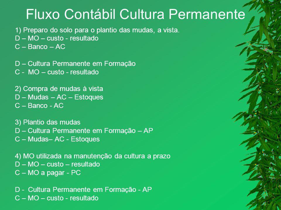 Fluxo Contábil Cultura Permanente