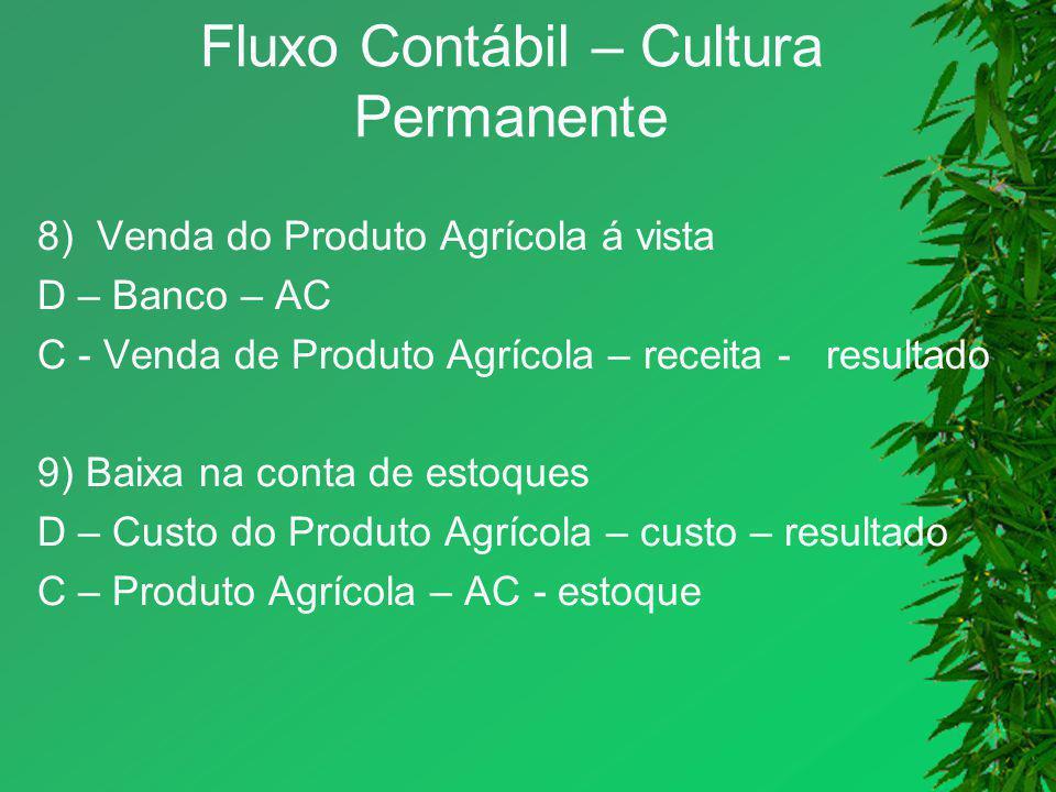 Fluxo Contábil – Cultura Permanente
