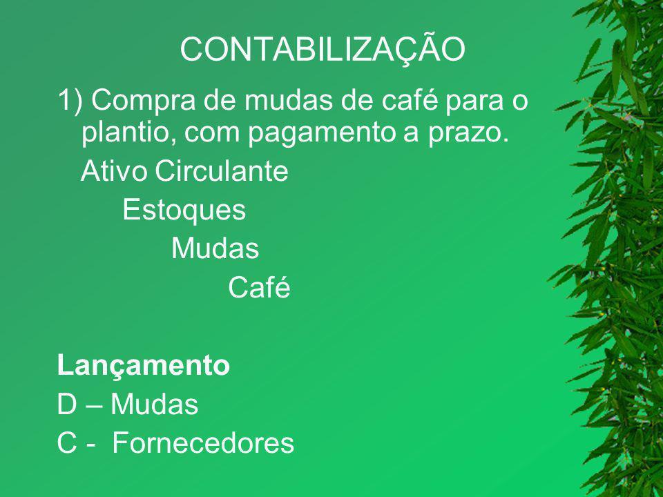 CONTABILIZAÇÃO 1) Compra de mudas de café para o plantio, com pagamento a prazo. Ativo Circulante.