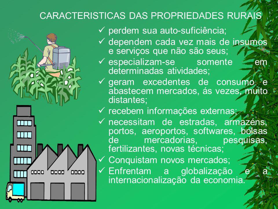 CARACTERISTICAS DAS PROPRIEDADES RURAIS