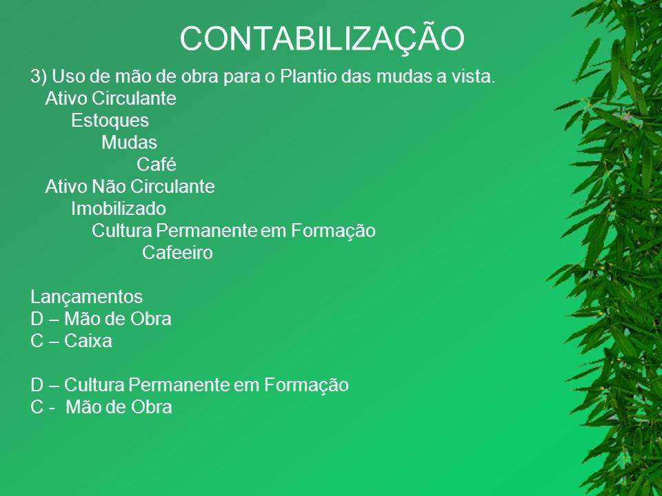 CONTABILIZAÇÃO 3) Uso de mão de obra para o Plantio das mudas a vista.
