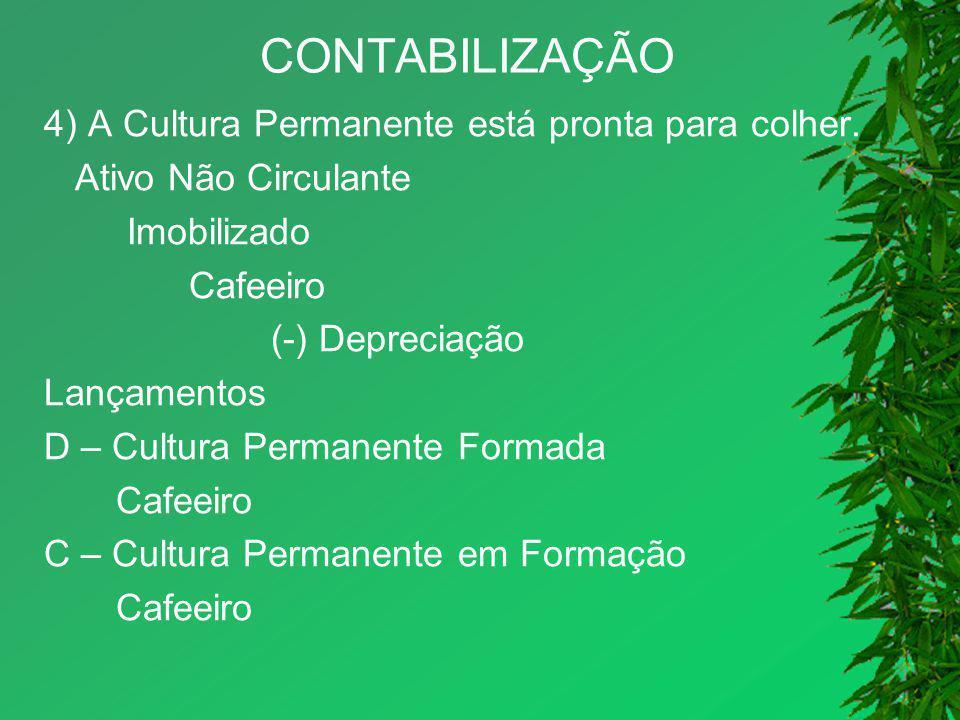 CONTABILIZAÇÃO 4) A Cultura Permanente está pronta para colher.