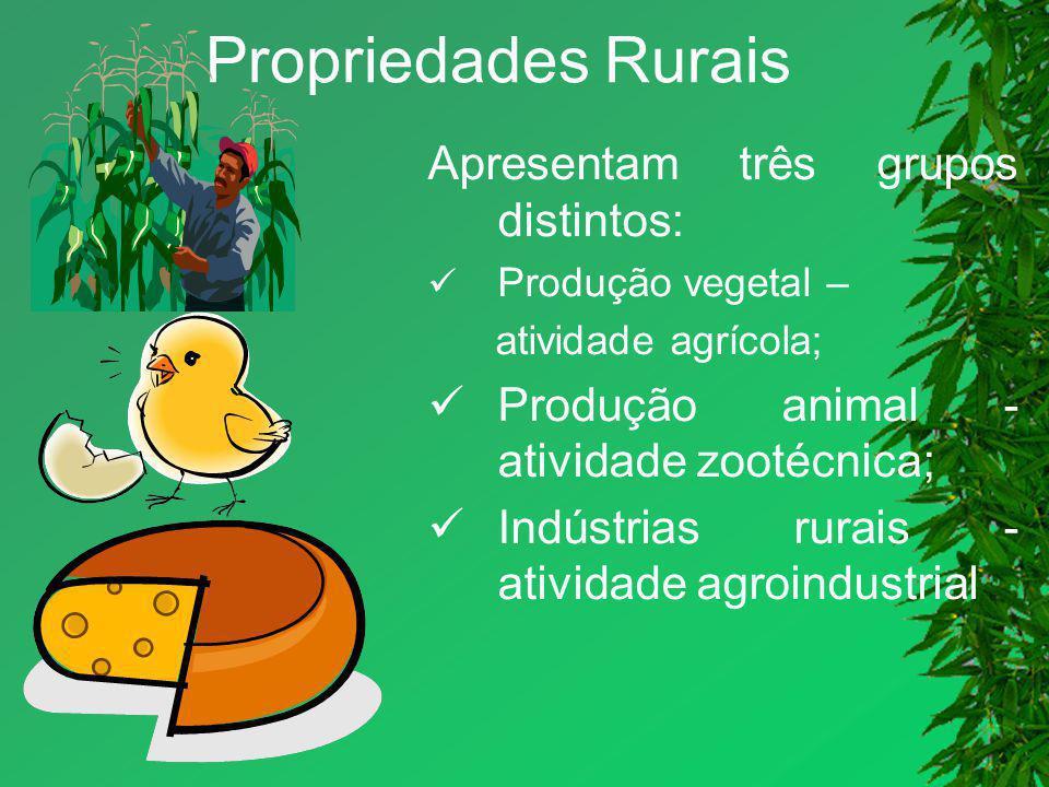 Propriedades Rurais Apresentam três grupos distintos: