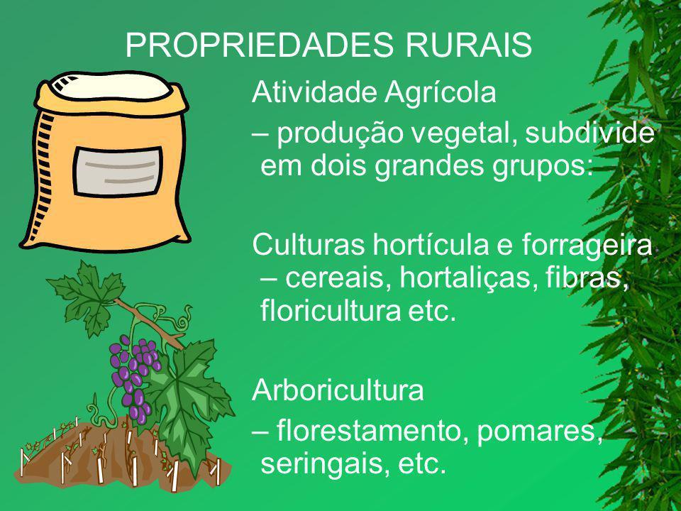 PROPRIEDADES RURAIS Atividade Agrícola