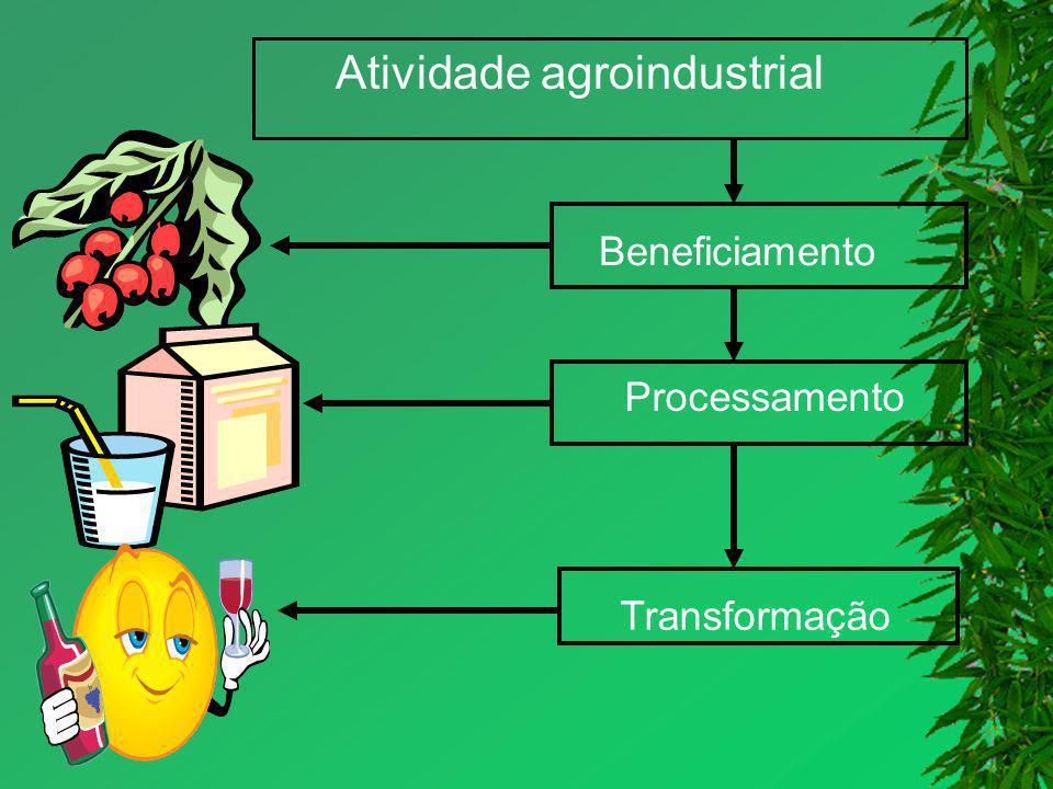 Atividade agroindustrial